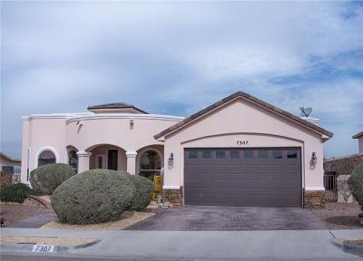 El Paso Single Family Home For Sale: 7307 Brays Landing Drive