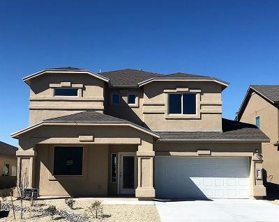El Paso Single Family Home For Sale: 117 Camino Cresta Place