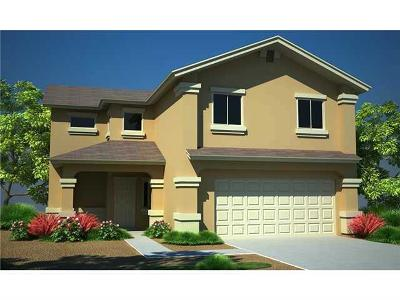 Single Family Home For Sale: 3345 David Palacio Drive