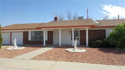 El Paso Single Family Home For Sale: 9133 Shaver Drive