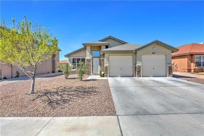 El Paso Single Family Home For Sale: 457 Winterspring Pl