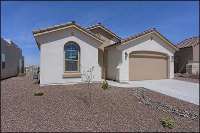 El Paso Single Family Home For Sale: 12409 Knightsbridge Drive