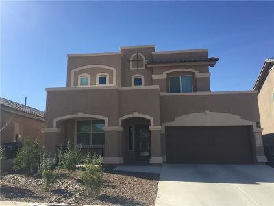 El Paso Single Family Home For Sale: 12304 Thren Avenue