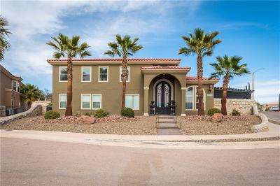 El Paso Single Family Home For Sale: 12209 Coral Gate Drive