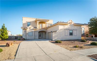 Horizon City Single Family Home For Sale: 13421 Pine Valley Avenue