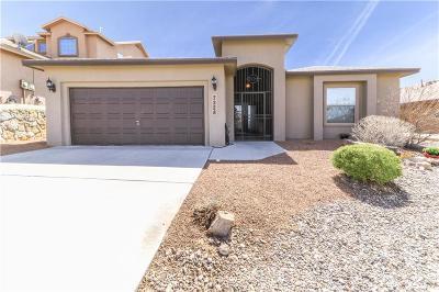 El Paso Single Family Home For Sale: 7228 Camino Del Sol