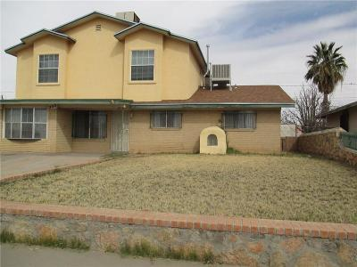 El Paso Single Family Home For Sale: 233 McCarthy Avenue