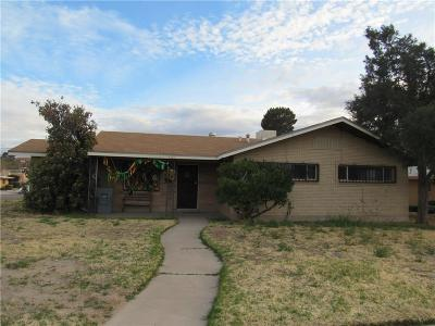 El Paso Single Family Home For Sale: 4530 Frankfort Avenue