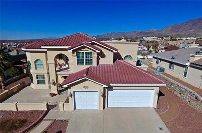 El Paso Single Family Home For Sale: 6733 Pearl Ridge Drive