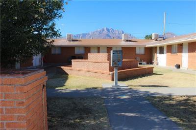 El Paso Multi Family Home For Sale: 8709 Lawson Street #8 units