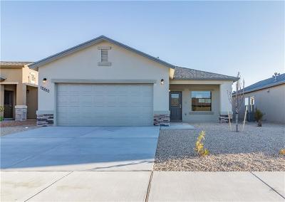 El Paso Single Family Home For Sale: 12820 Runway Avenue