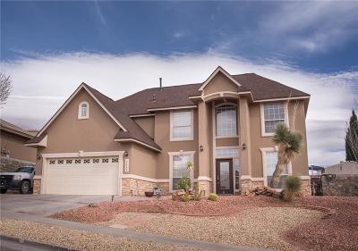El Paso Single Family Home For Sale: 1412 Cloud Ridge Drive
