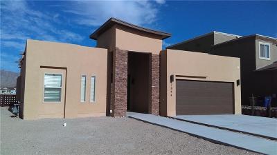 El Paso Single Family Home For Sale: 13444 Wigan Road