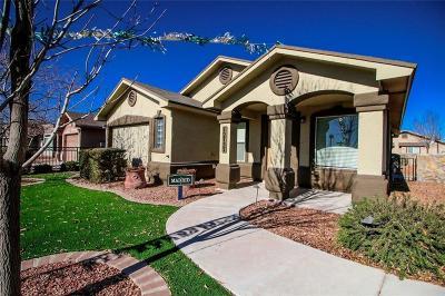 Socorro Single Family Home For Sale: 1132 Cielo Bonito Drive