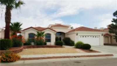 El Paso Single Family Home For Sale: 12965 Kaitlyn Reece