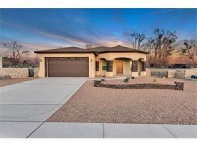 Canutillo Single Family Home For Sale: 644 Jalynn Grace Drive