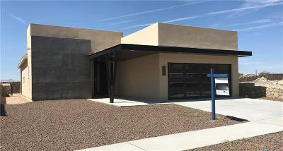Horizon City Single Family Home For Sale: 153 Via Rojas Drive