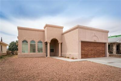 Single Family Home For Sale: 3265 Mike Godwin Drive