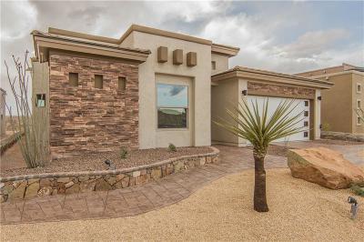 El Paso Single Family Home For Sale: 13020 Cozy Cove Avenue