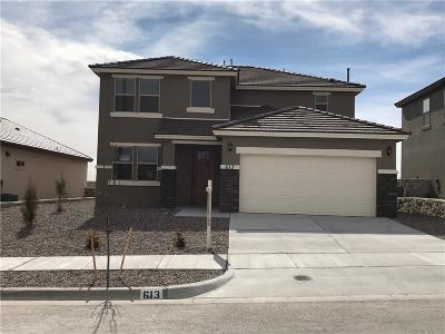 El Paso Single Family Home For Sale: 613 Coxdale Street