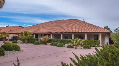 El Paso Single Family Home For Sale: 4019 Little Lane