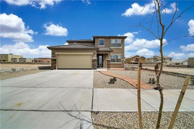 Horizon City Single Family Home For Sale: 800 Woodmanstone Road