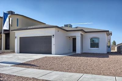 Canutillo Single Family Home For Sale: 437 Isaias