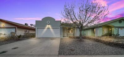 Socorro Single Family Home For Sale: 10388 Valle Del Mar Drive
