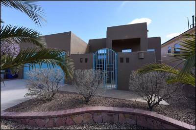 El Paso Single Family Home For Sale: 7378 Camino Del Sol