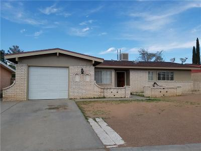 El Paso Single Family Home For Sale: 11237 Skipper Drive