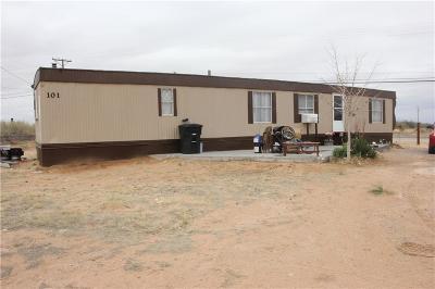 Horizon City Single Family Home For Sale: 15956 Horizon Blvd.