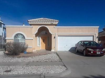 El Paso Single Family Home For Sale: 3104 Vere Leasure Drive