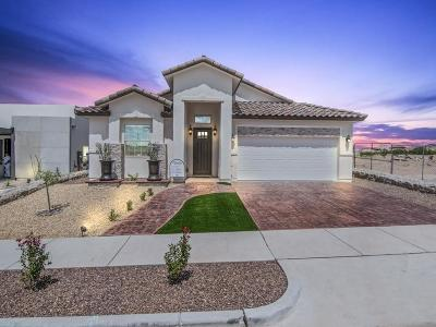 Horizon City Single Family Home For Sale: 12628 Josie Tinajero Avenue