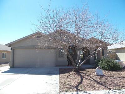 Horizon City Single Family Home For Sale: 14286 Desert Point Drive