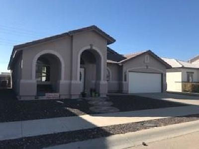El Paso Single Family Home For Sale: 3125 Tierra Nora Drive
