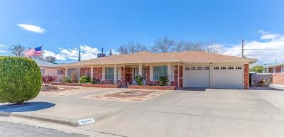 El Paso Single Family Home For Sale: 9260 McFall Drive