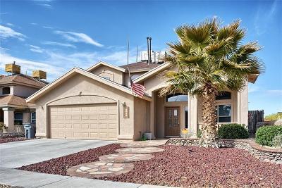 El Paso Single Family Home For Sale: 1469 Paseo Del Sur Court