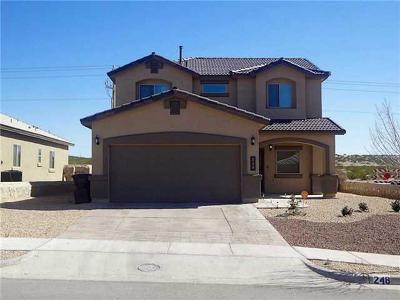Horizon City Single Family Home For Sale: 248 Saltford Drive
