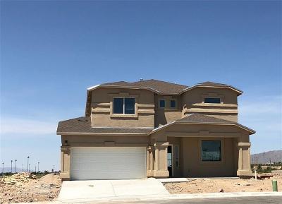 El Paso Single Family Home For Sale: 249 Gonzalo Circle