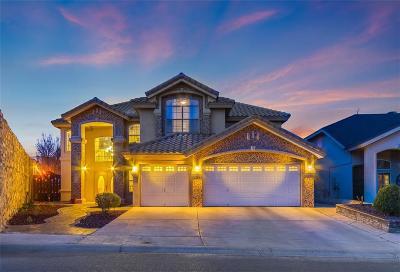 Horizon City Single Family Home For Sale: 12517 Paseo Lindo Drive