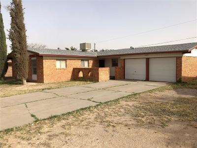 El Paso Single Family Home For Sale: 10300 Ashwood Drive