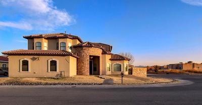 El Paso TX Single Family Home For Sale: $384,900