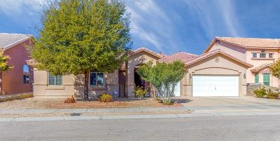 Single Family Home For Sale: 3065 Tierra Nora