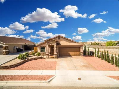 Horizon City Single Family Home For Sale: 181 Horizon Point Circle