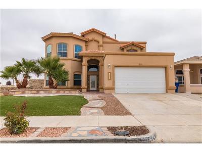 El Paso TX Single Family Home For Sale: $244,930