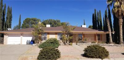 El Paso TX Single Family Home For Sale: $232,300