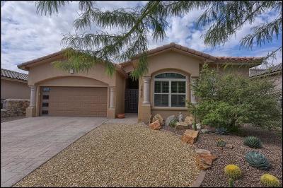 El Paso TX Single Family Home For Sale: $294,700