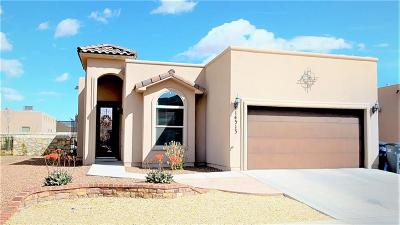 El Paso TX Single Family Home For Sale: $156,000