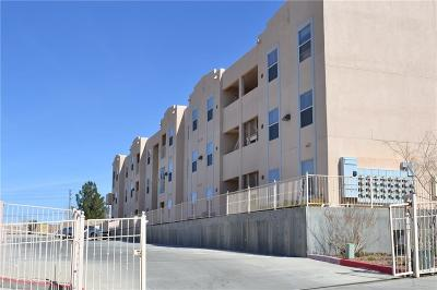El Paso Multi Family Home For Sale: 6027 Brook Hollow Drive #30