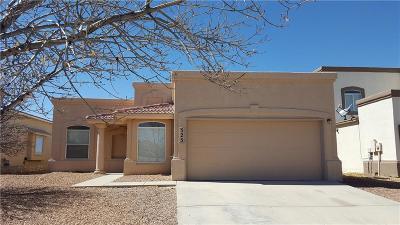 Horizon City Single Family Home For Sale: 325 Peter Noyes Drive
